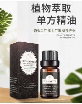FREE SHIPPING EUCALYPTUS ESSENTIAL OIL HUMIDIFIER