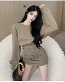 FREE SHIPPING LADIES LONG-SLEEVED FITTED PLUS DRESS